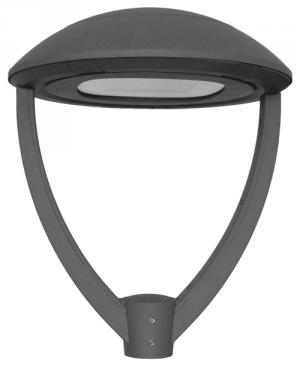 Wobbegong-Standard-Bracket